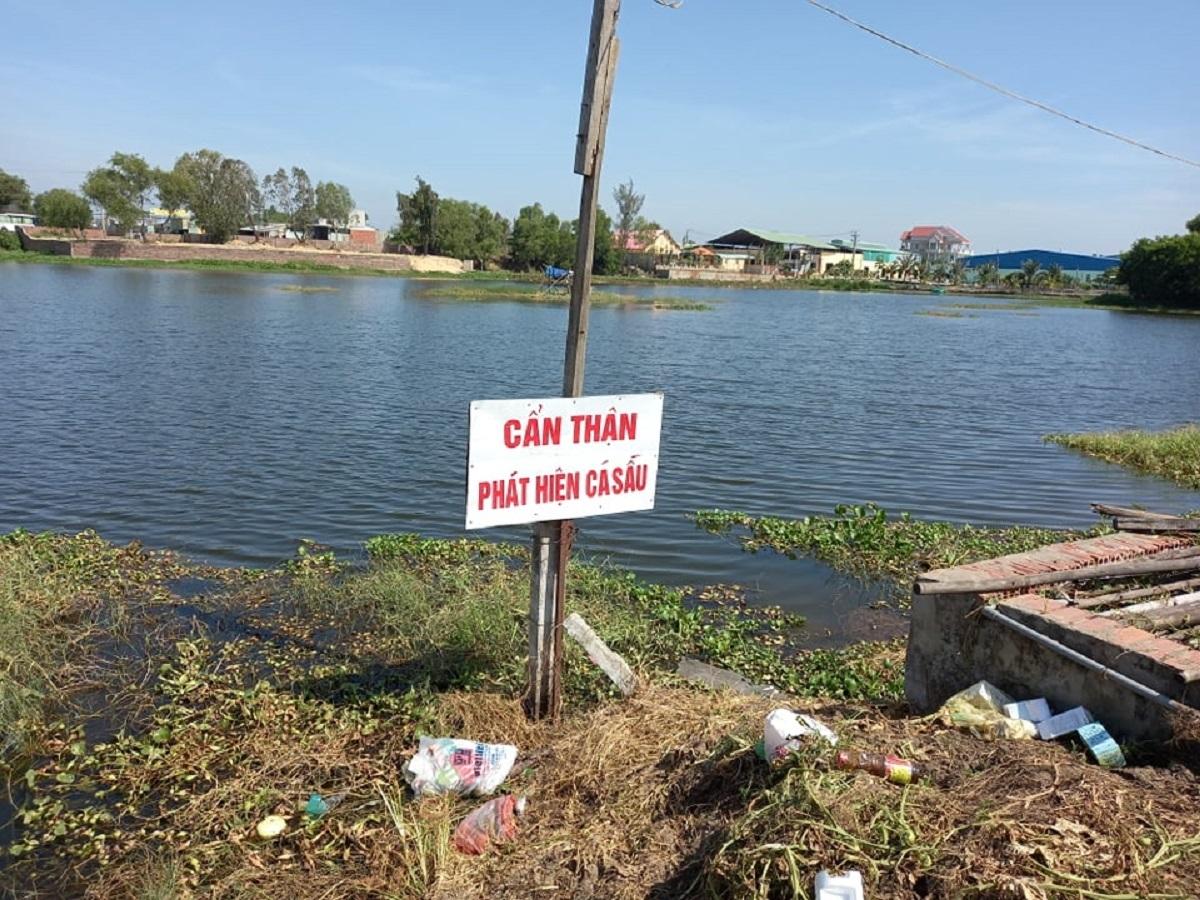 Bủa lưới vây bắt cá sấu nằm trong hồ điều hòa ở Vũng Tàu