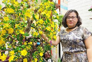 Bà chủ Sài Gòn dùng 35kg đất sét làm cây mai cao 2m chưng Tết