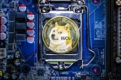 Thành tỷ phú USD nhờ đầu tư vào Dogecoin