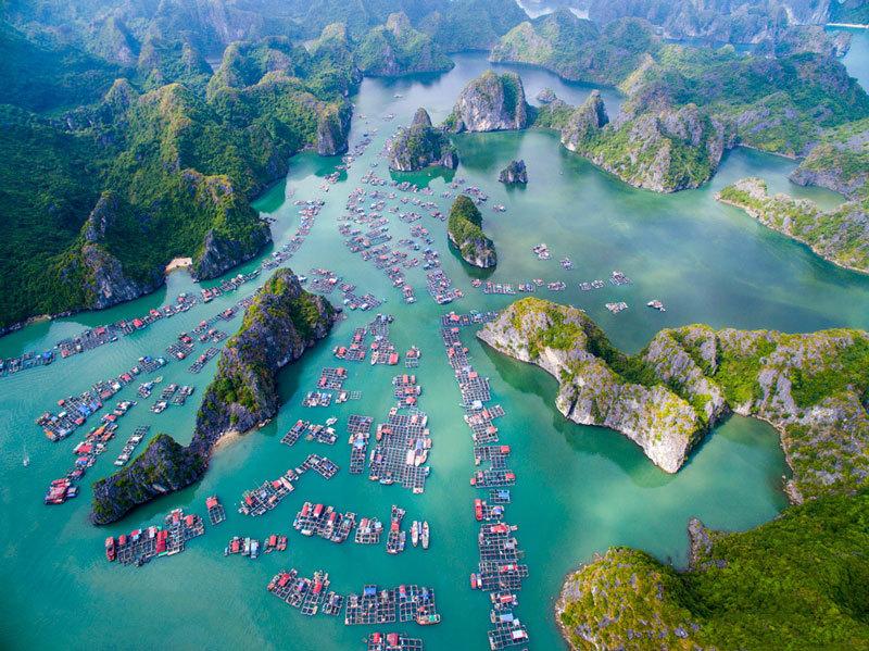 Quần đảo Cát Bà,Vịnh Hạ Long