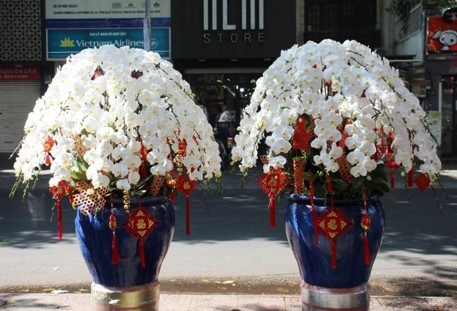 Flower markets see peak activity on pre-Tet days