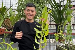 9x chủ vườn lan 200m2 khởi nghiệp từ tình yêu với loài hoa quý