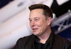 Elon Musk đã khiến Bitcoin và tiền mã hóa trở nên điên rồ