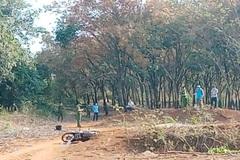 Nữ công nhân ở Bình Phước nghi bị sát hại trong lô cao su