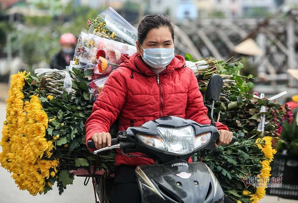 Tai họa ngày cận Tết, cả làng hoa Hà Nội 'ngồi trên đống lửa'