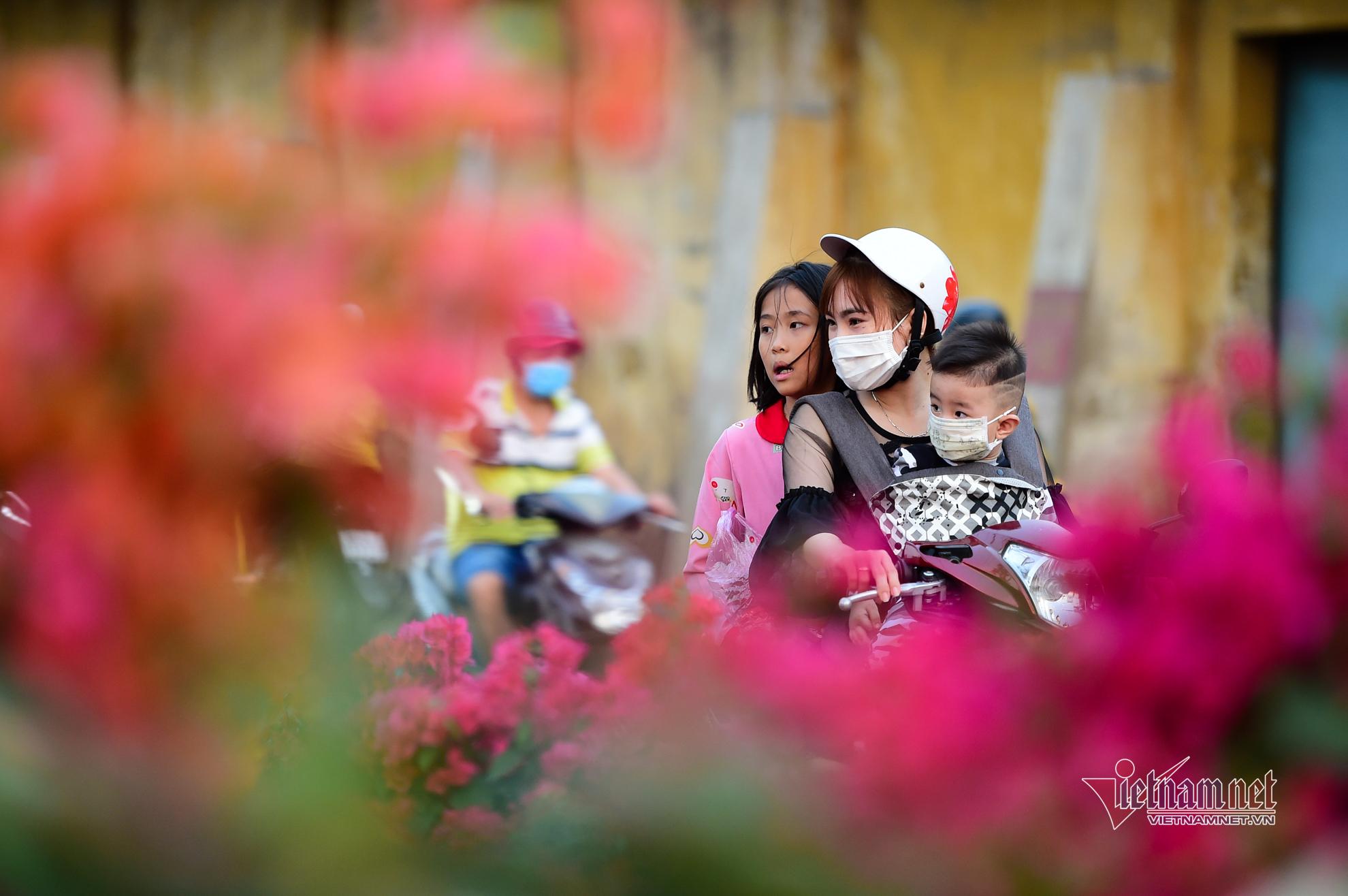 Tiểu thương bán hoa Tết bến Bình Đông phập phồng vì Covid-19