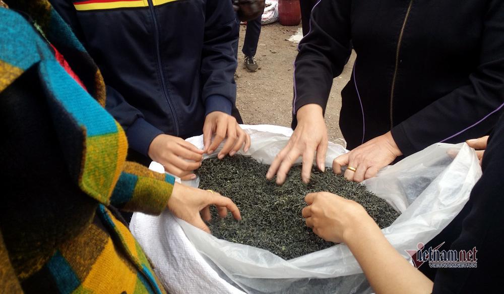 Kỳ tích trà Thái bán 5 triệu/kg, quà xách tay lãnh đạo 21 quốc gia toàn cầu