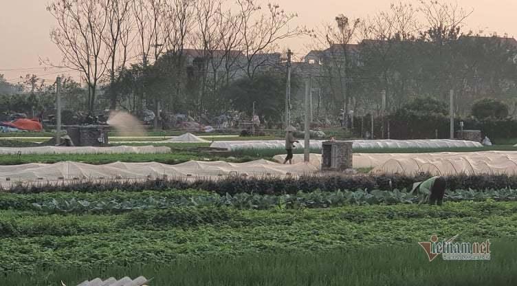 Mê Linh lập chốt ven cánh đồng, hàng hóa khử khuẩn trước khi ra khỏi làng