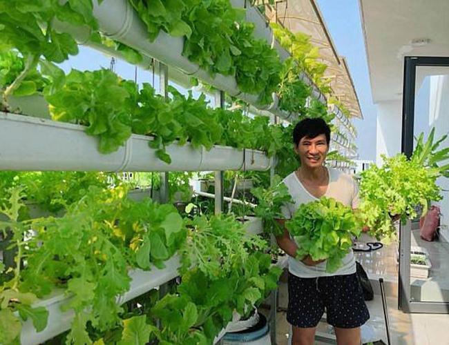 Lý Hải - Minh Hà vui mừng vì trồng được loại ớt nửa tỷ đồng một kg