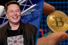 Elon Musk tiết lộ bí mật, bitcoin tăng giá chóng mặt