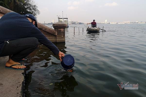 Cá phóng sinh 23 tháng Chạp, bơi chưa kịp đã vướng lưới ngư phủ