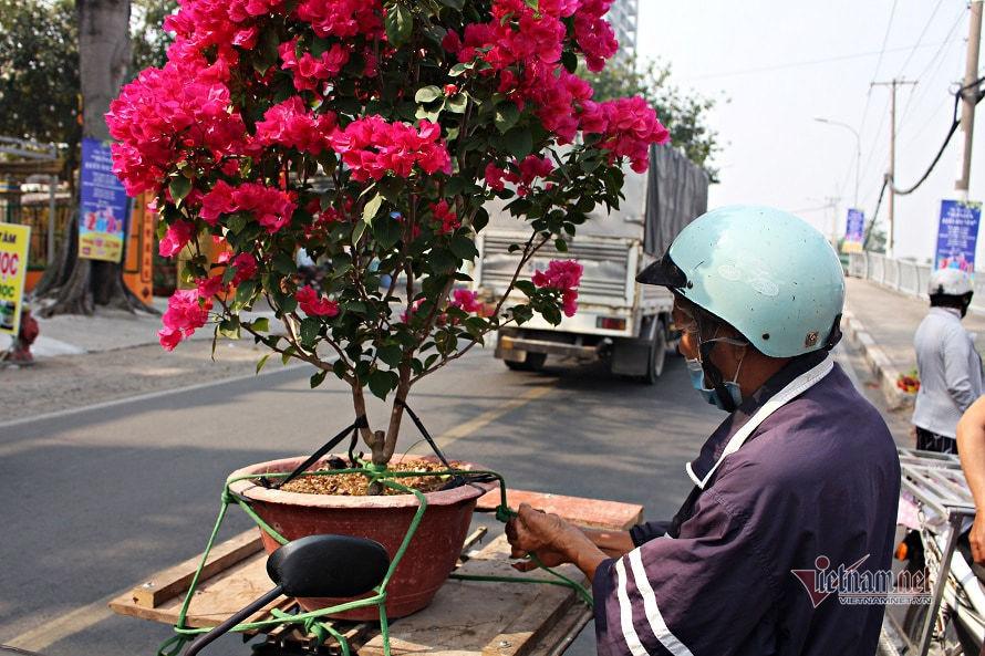 Thương hồ miền Tây chở hoa xuân lên TP.HCM tìm Tết