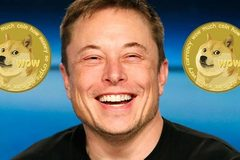 Elon Musk: 'Giá Bitcoin có vẻ hơi cao'