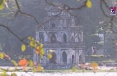 Four Vietnamese cities among most popular destinations in Asia: TripAdvisor