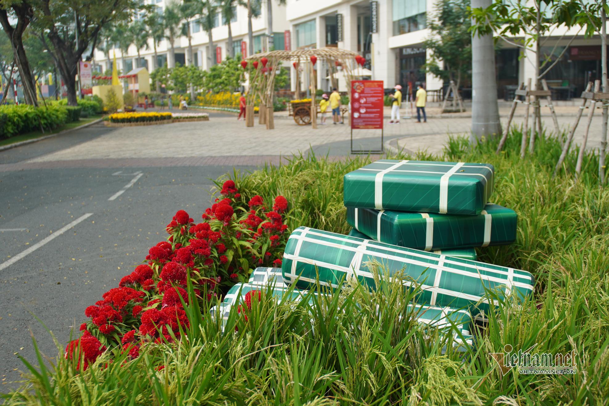 Đường hoa xuân dài 700m ở Phú Mỹ Hưng