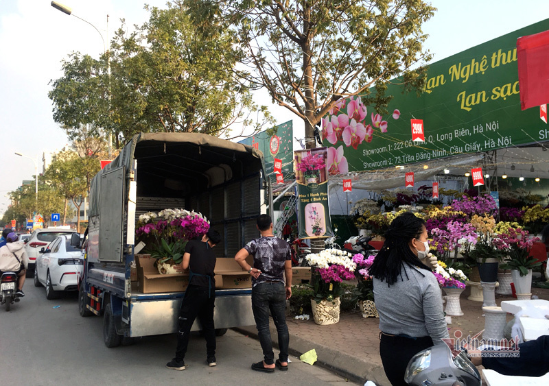 Phố bán hoa nhà giàu bậc nhất Hà Nội, một mùa ế ẩm, chợ tàn sớm