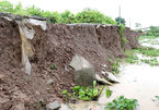 Bac Lieu to build more erosion-prevention projects