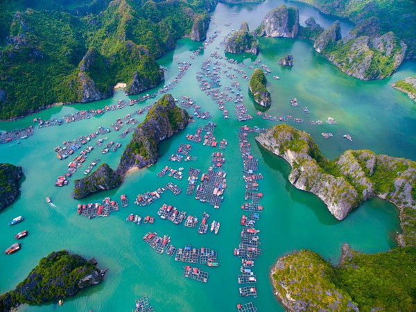 Can't-miss spots for Cat Ba sightseeing tour