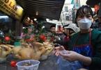 """Chen chân mua gà tiền triệu cúng giao thừa ở khu chợ """"nhà giàu"""" Hà Nội"""