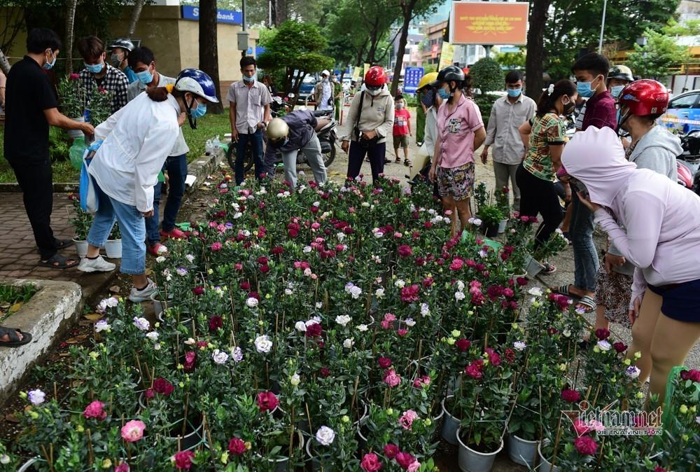 Tiểu thương rướm nước mắt bán tháo, cắt bỏ hoa ế ngày 30 Tết