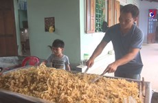 Candied ginger makes Tet warm