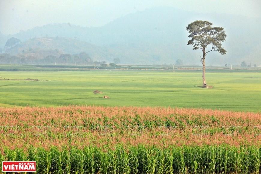 ancient village,H'nong,Dak Lieng,Dak Lak