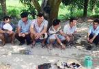 Bắt hàng loạt vụ đá gà, đánh bài ở Vĩnh Long, thu giữ hơn 100 triệu