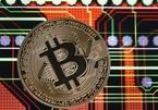 Một tuần thê thảm, Bitcoin tụt sâu dân chơi hoảng sợ