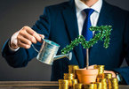 Investors pour money into startups, promote unicorns