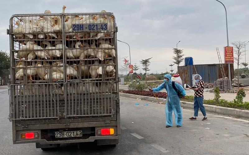 Khắp phía Nam ế thừa thực phẩm, Sài Gòn thiếu hụt chưa cách gỡ