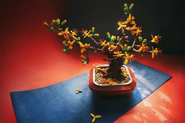Vietnamese designer recreates Tet traditions using Lego