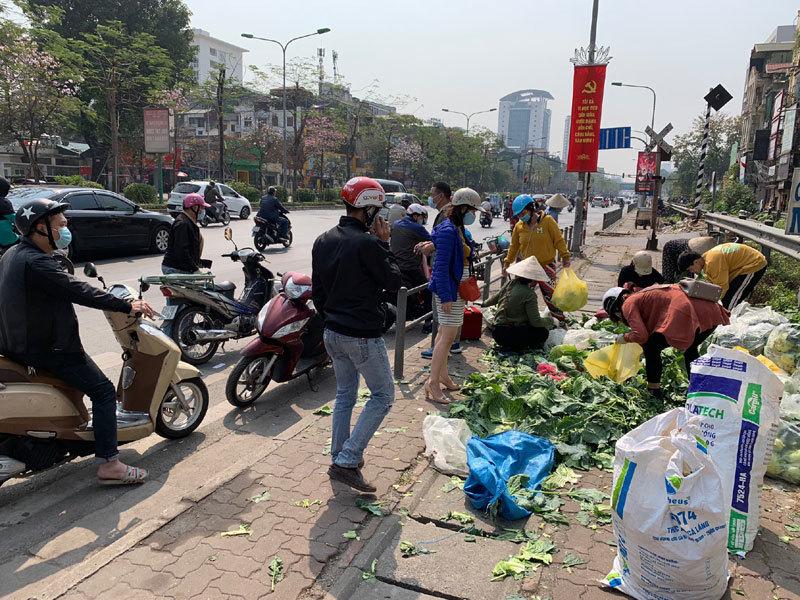 Hàng trăm tấn rau Hải Dương về Hà Nội: Vài nghìn/kg, gọi nhau giải cứu