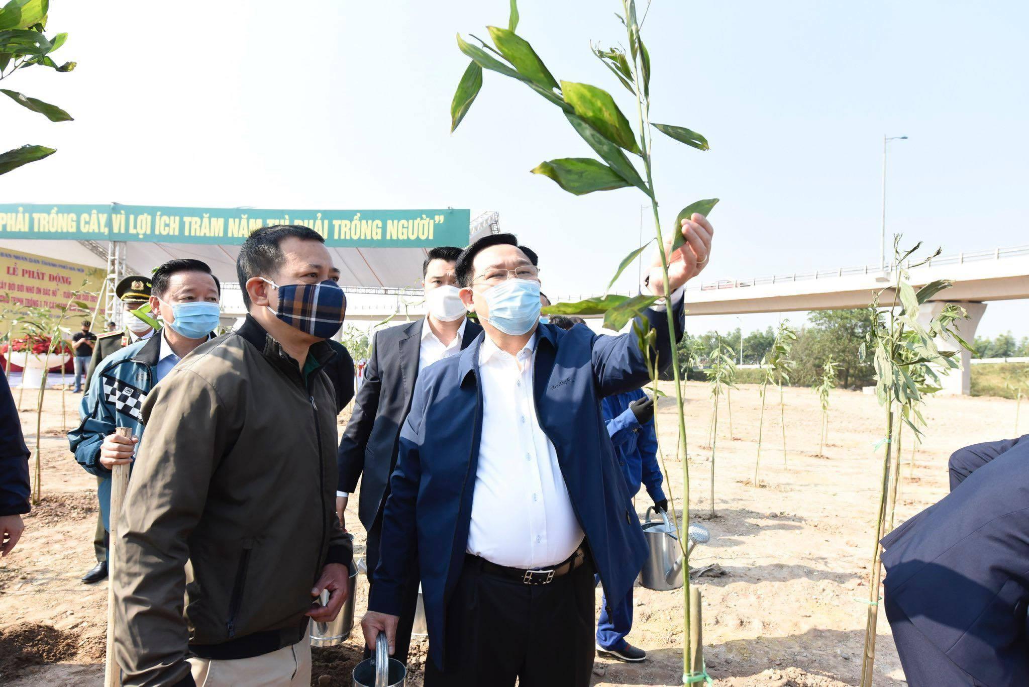 Hà Nội phấn đấu mỗi người trồng một cây xanh