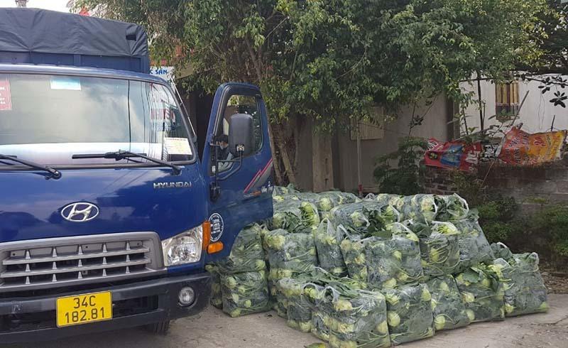 Xe nối đuôi nhau rời Hải Dương, một ngày giải cứu 600 tấn rau quả