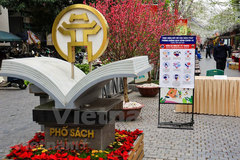 Hanoi Book Street given facelift during Tet