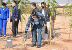 Environment ministry builds digital map, responding to 1-billion tree programme