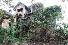 Đại gia xây căn biệt thự tiền tỷ giữa rừng rồi lặn mất tăm