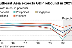 Nikkei Asia: Vietnam will be Southeast Asian growth leader in 2021
