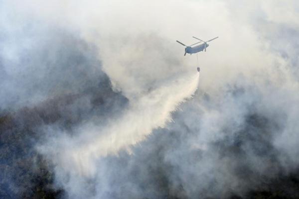 Cháy rừng nghiêm trọng gần thủ đô Nhật Bản