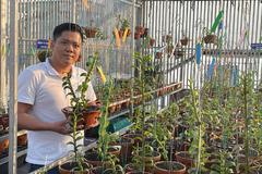Cơ duyên bất ngờ của ông chủ vườn lan Diệp Minh Tuyền