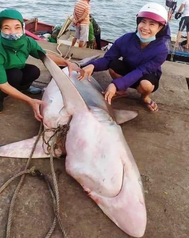 Ngư dân bắt được cá lạ giống cá mập, bán 18 triệu đồng