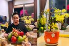 Biệt thự ngập tràn hoa của ca sĩ Quang Lê