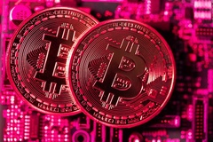 Triệu phú Bitcoin chi 25 triệu USD đi du lịch quanh thế giới