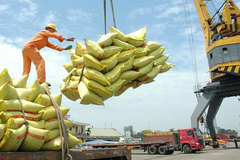 From saving hunger to world's best rice title