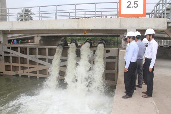 Điện lực miền Nam lập phương án tăng cường cấp điện chống hạn mặn