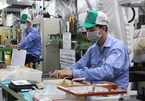 Vietnam, EFTA poised to finalize FTA later this year