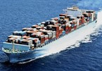 Goods owners say shipping freight costs are far too high