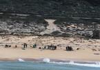 Israel tố Iran xả dầu gây ô nhiễm bờ biển nghiêm trọng nhất lịch sử