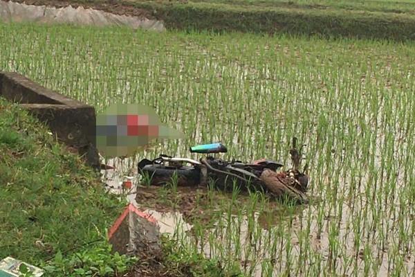 Lao xuống ruộng lúa, thanh niên tử vong cạnh xe máy ở Hà Nội
