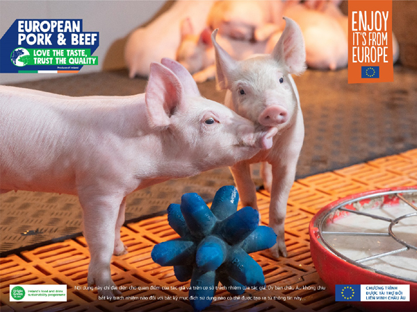 Cơ hội cho thịt heo và bò từ Ireland chinh phục thị trường Việt